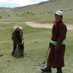 Mongolian Horse Herder