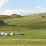 Tourist Yurt Camp