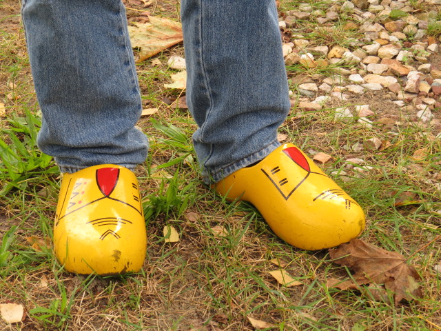 Another neighbour with genuine Clogs!