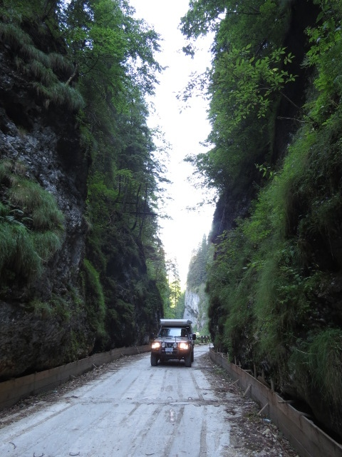 Gorge Drive in Apuseni National park