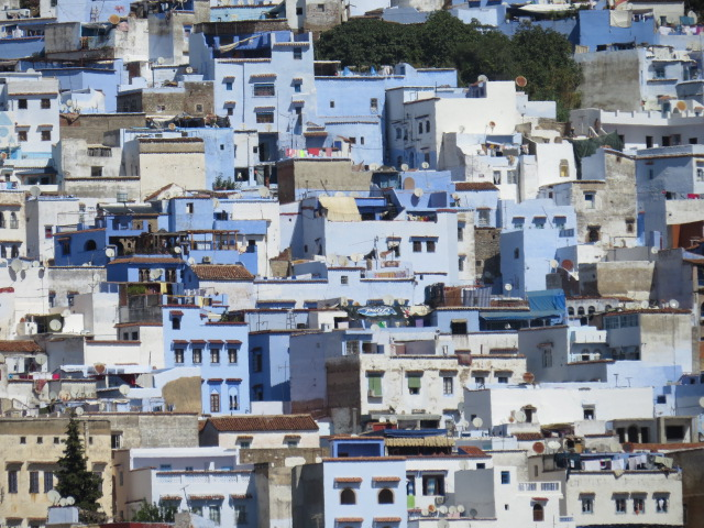 The iconic blue buildings of Chefchaouen
