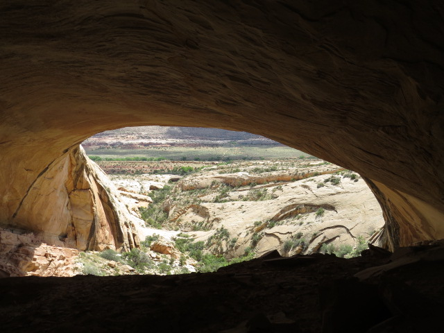 View from inside the ancient cave