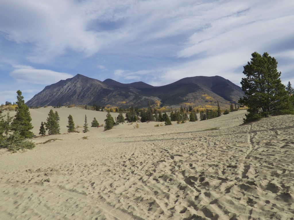 Carcross Desert - the smallest desert in the world!