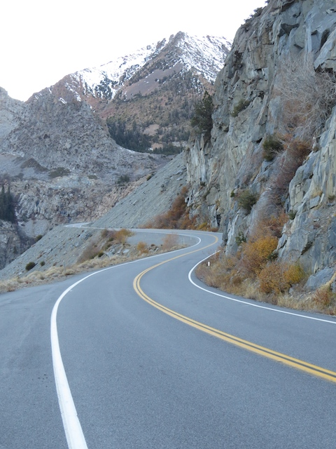 More Tioga Rd Scenery