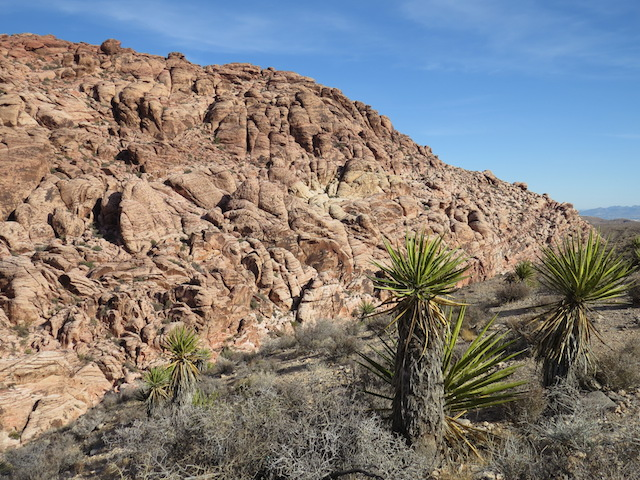 More Red Rock Canyon