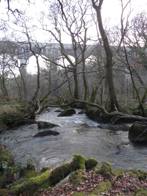 Luxulyan Valley