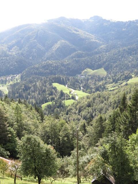 Great Slovenian Scenery