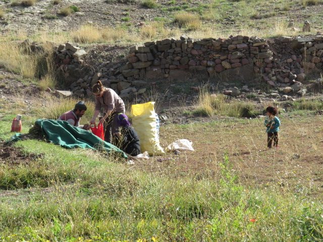 Buying potatoes from a local farmer whose wife then suggested I should give her my Seiko watch!