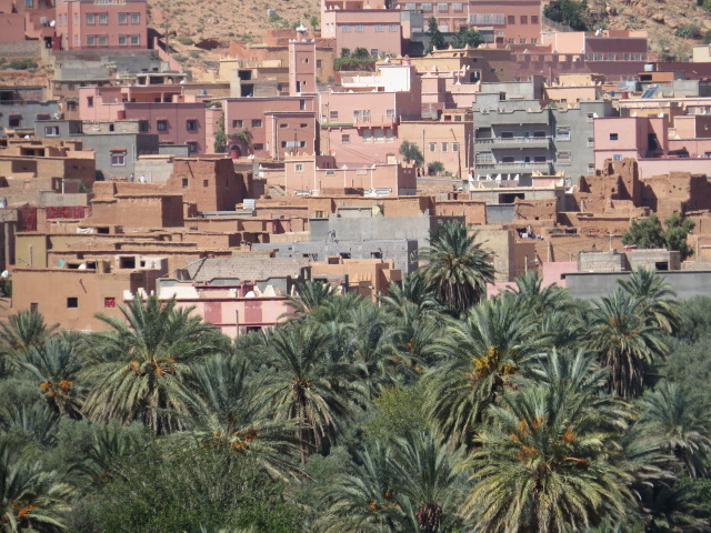 Beautiful date palm valleys