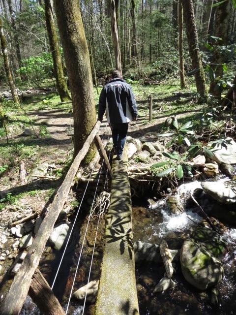 Nice Hiking Trails