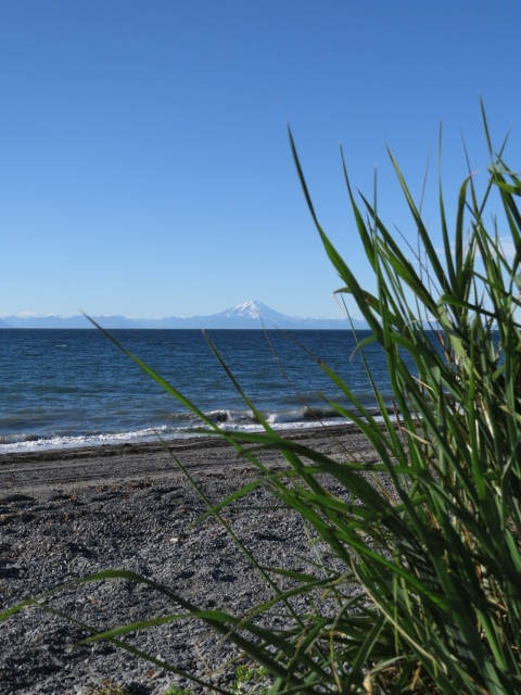 Our Cook Inlet beach camp with volcano across the bay