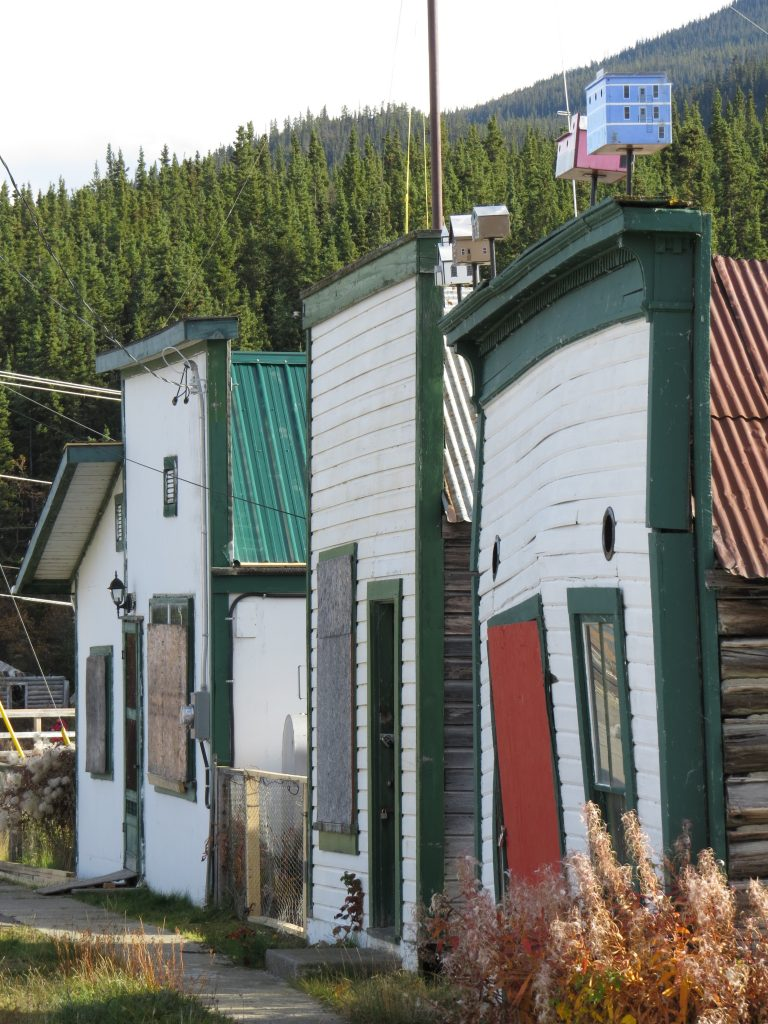 Carcross town site