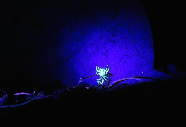 UV light!!!