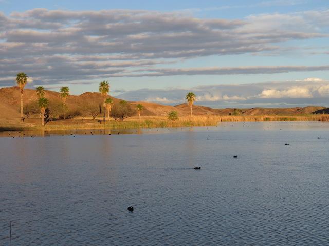 Imperial Dam Recreation Area